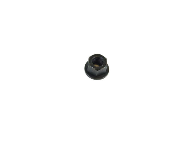Fog Lamp Assembly Nut