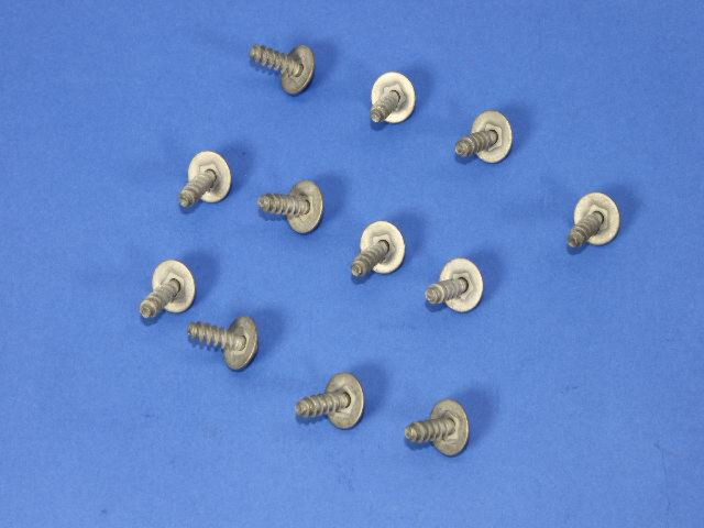 Fog Lamp Screw