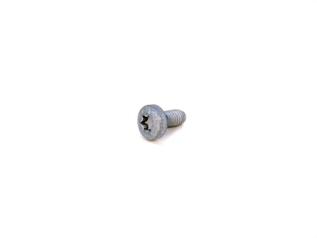 Windshield Pillar Trim Screw