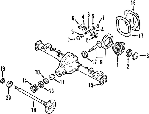 Rear Support Harness