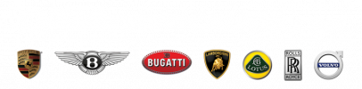 Default Store Logo