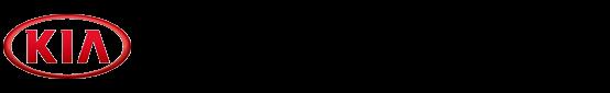 Kia 00755-27210 Differential Pinion Bearing