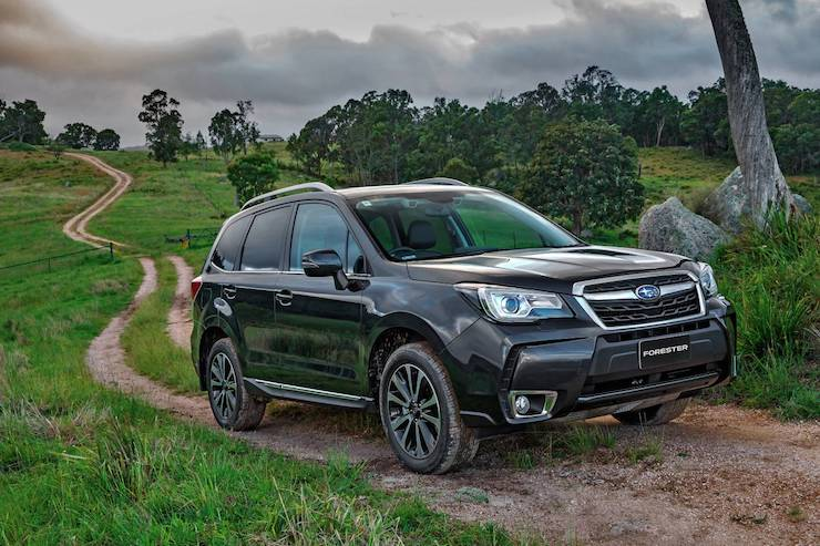 Subaru Forester On A Trail