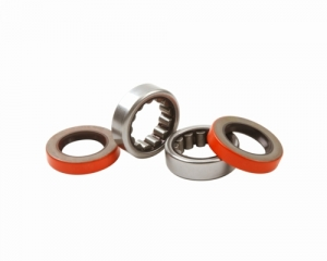 Axle Shaft Bearing Kits
