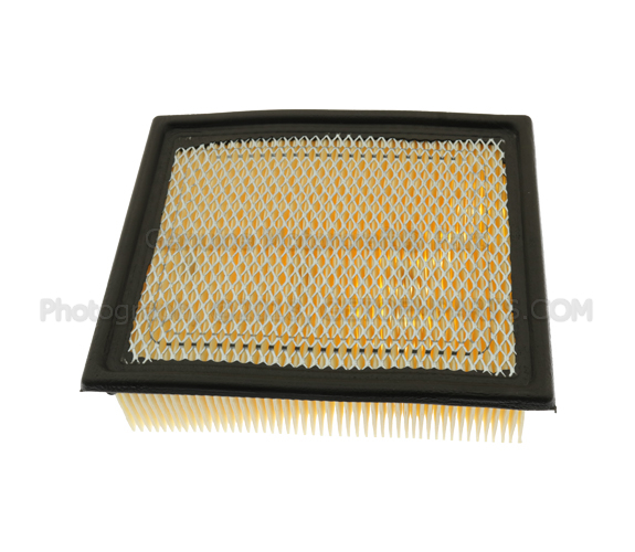 Air Filter - Ford (2L2Z-9601-AC)
