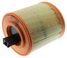 Air Filter - GM (13367308)
