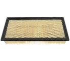 Air Filter - Ford (5C3Z-9601-AA)