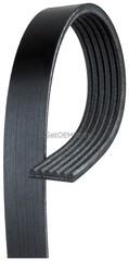 Belt - GM (19355282)