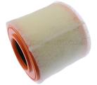 Air Filter - GM (39030321)
