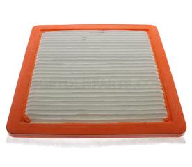 Air Filter - GM (22971580)