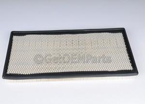 Air Filter - GM (19256977)