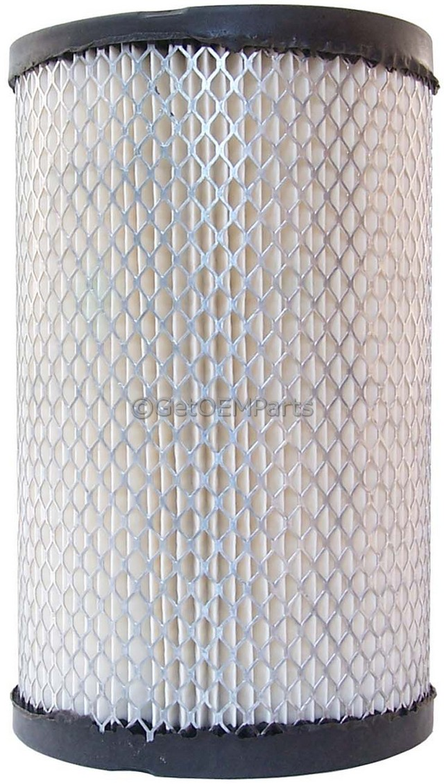 Air Filter - GM (88915426)