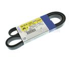 Serpentine Belt - GM (12591059)