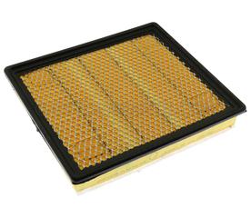 Air Filter - GM (20972655)
