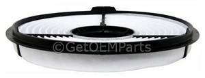 Air Filter - GM (25099249)