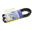 Serpentine Belt - GM (12639280)