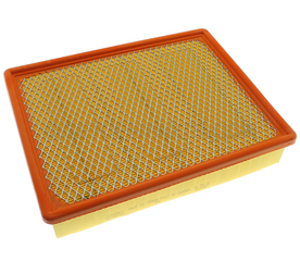 Air Filter - GM (23349854)