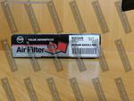 Air Cleaner Element - Nissan (AF54M-EA00PNW)