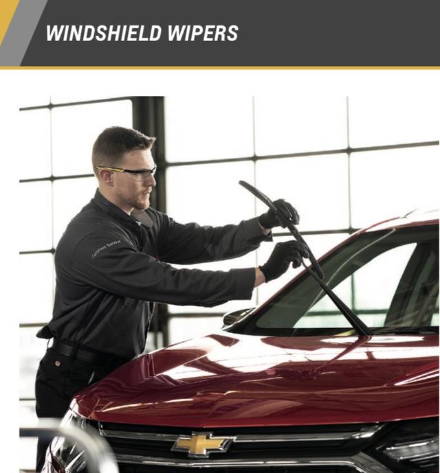 Camaro Wiper Blade Kit - GM (10DB93)