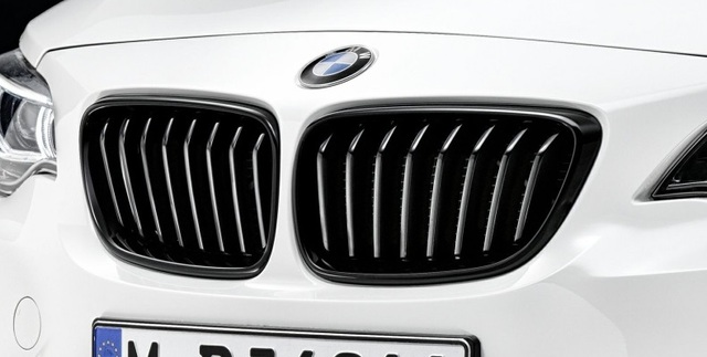 Details about  /3 Clip bandes Grille Calandre BMW M Motorsport Performance F20 F21 125I M135I