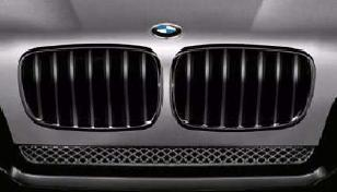 E83 X3 M Performance Black Grille - Right - BMW (51-71-2-155-448)