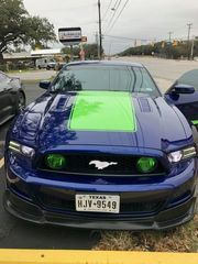 10-17 Ford Mustang Front Pony Illuminated Grille  Black Emblem Color Shift - Mopar (FP-B-CS-WF)