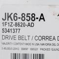 OEM NEW Ford 2001-2004 Taurus Sable DOHC Serpentine Alternator V-Belt 1F1Z8620Ad - Ford (1F1Z-8620-AD)