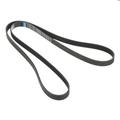 Belt - GM (12622598)