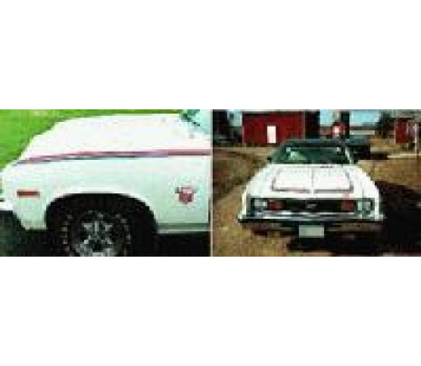 1975-1976 Paint Stencil - Classic Muscle (360646)
