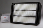 Air Filter - Mitsubishi (MZ690445)