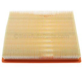Air Filter - GM (10354942)