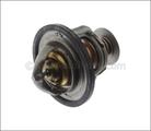 Engine Coolant Thermostat - GM (12559575)