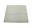 Air Filter - GM (20901295)