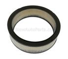 Air Filter - GM (25040929)
