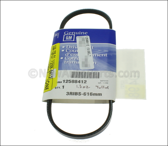 Water Pump Belt - GM (12588412)