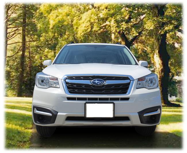 Mount for front License Plate,2017-18 Forester [ Non-Turbo ] - Custom (NESFO17FP)