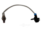 Oxygen Sensor - GM (12609456)