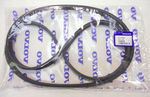 Serpentine Belt - Volvo (30731808)