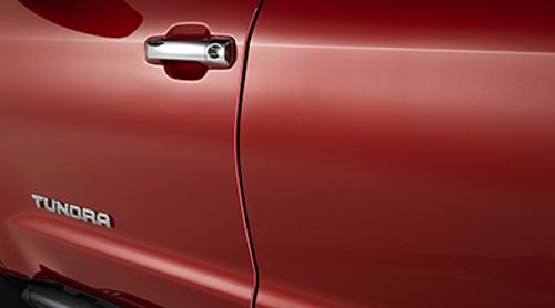 Door Edge Guards - (Color Keyed) - Custom (PT936-34171)