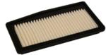 Air Filter - GM (96910360)