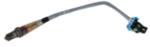 Oxygen Sensor - GM (12634061)