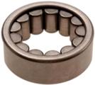 Bearing - GM (12479031)
