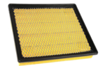 Air Filter - GM (22753242)