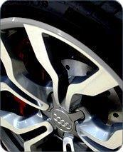 Alloy Gator Silver - GM (GATOR-SILVER)