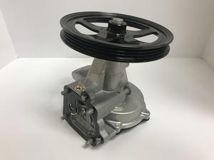 Vacuum Pump - GM (12696313)