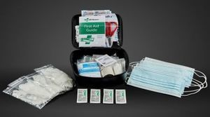 Genuine Toyota All Models First Aid Kit (PPE, masks, and bandages) - Toyota (PT420-00220)