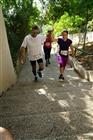 מדרגות גדרה 2 - 05/27/2016 08:32:36