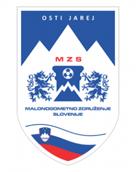 Slovenian Minifootball Association