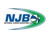 2008 divisional logo  trans bg