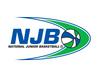 2008 divisional logo (trans bg)